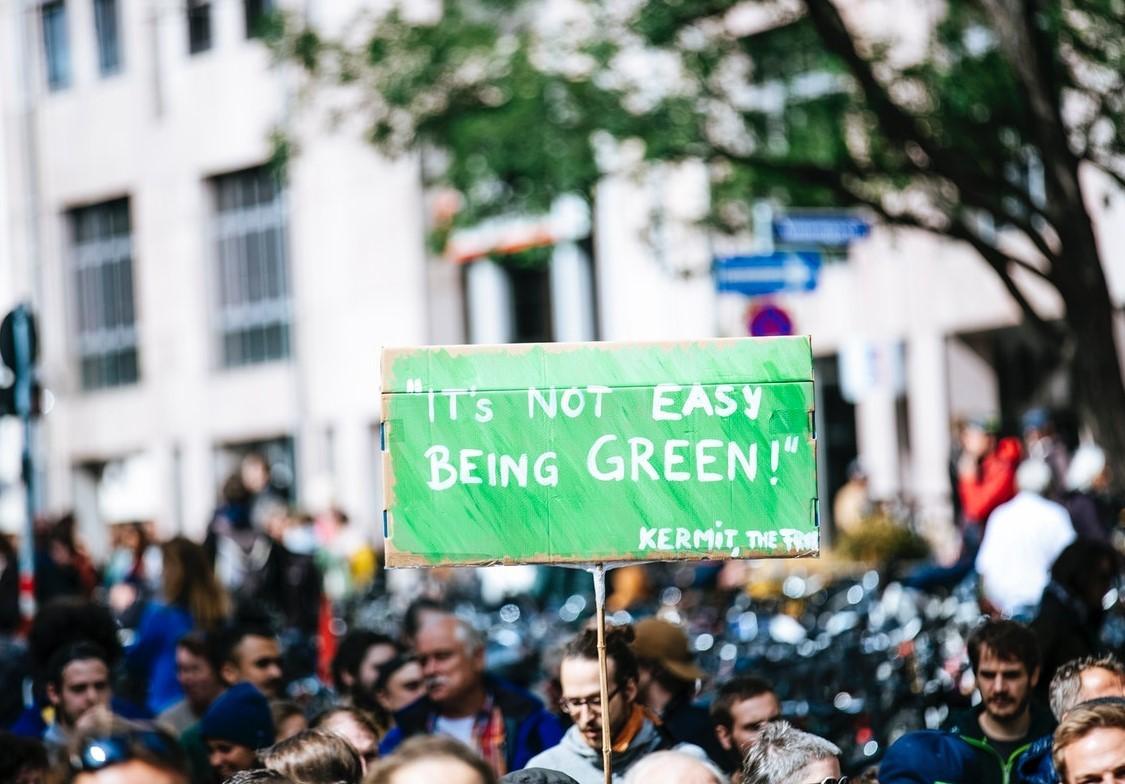 Ikke enkelt å være grønn2