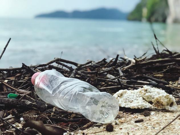 Plast1